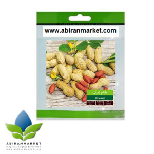 بذر بسته بندی بادام خاکی